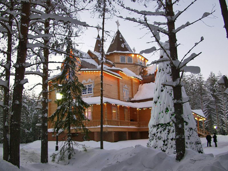Заготовка жасмина на зиму